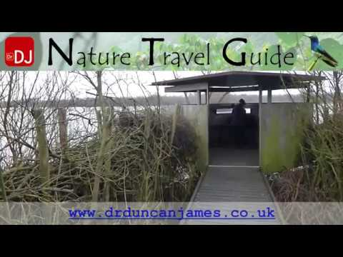 Duck Hide, Schiermonnikoog Island, Netherlands | Views From the Footpath #1 | Nature Travel Guide
