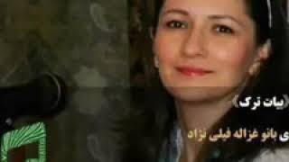 بیات ترک بانو غزاله فیلی نژاد.    چشمیست خون افشان ز دست آن کمان ابرو.