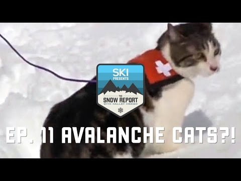 The Snow Report Episode 11: Avalanche Cats at Copper