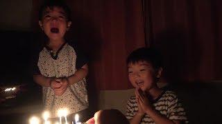 お誕生日のケーキが嬉しいひなごんとろうそくの灯が怖くて泣くおいちゃん   ひなごんとおいちゃん  SunflowerTV thumbnail