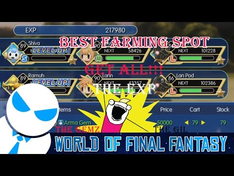 BEST FARMING SPOT - WORLD OF FINAL FANTASY [217K Exp/Fight!!]