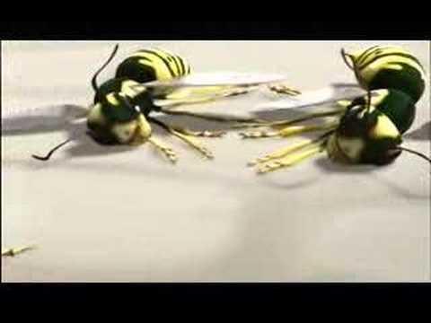 Graeme Base Animalia TV series - Part 2