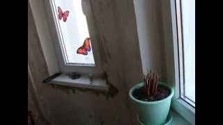 ремонт квартиры своими руками - делаем качественно, просто, с любовью урок № 1