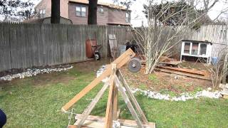 Backyard Trebuchet
