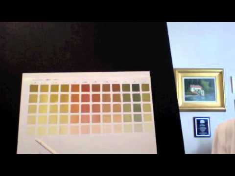 Pat Fiorello Oil Painting How To Make Color Charts Youtube