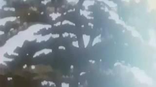 ayashi no ceres cap 2 sub español 2/3