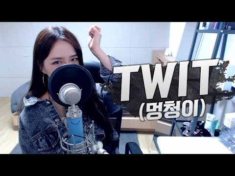 화사(Hwa Sa) – TWIT(멍청이) COVER by 새송|SAESONG