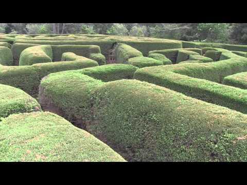 Le Parc Labyrinthe De Gimnyeong Sur L'île De Jeju, Corée Du Sud