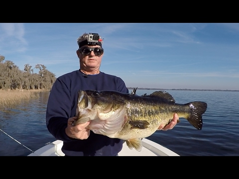 Shiner fishing for big bass on natural lakes youtube for Bass fishing youtube