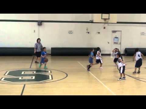 JAO 2014 Winter vs Tigerettes Hot Shotz (2-16-2014)