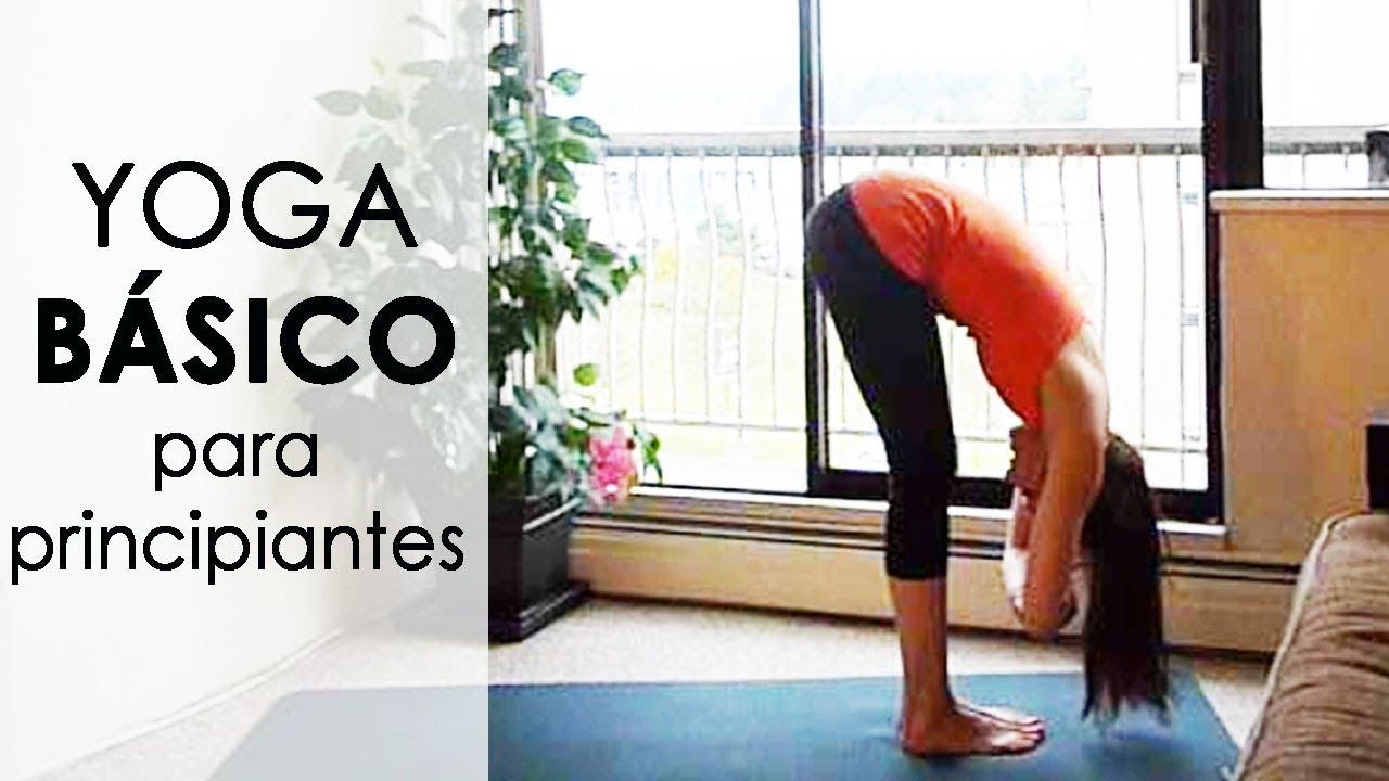 Clase De Yoga Basico Para Principiantes 20 Min Youtube