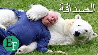 5 صداقات غريبة لا تصدق حدثت بين أشخاص وحيوانات مفترسة