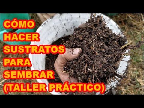 sustratos-para-sembrar.-cÓmo-preparar-sustratos-fÁcil,-rÁpido-y-efectivo-✅✅✅-(taller-prÁctico)