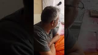 Шоу Писи Камушкина