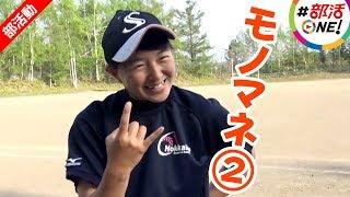 みんなの部活紹介! 札幌新陽高等学校の女子硬式野球部は、北海道で初の...
