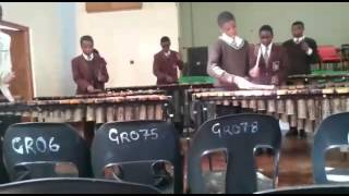 Mt Pleasant School Marimba Band (2015)-Nhemamusasa