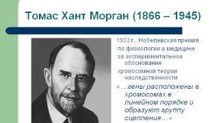 Презентация История развития генетики