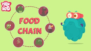 What Is A Food Chain? | The Dr. Binocs Show | Learn Series For Kids