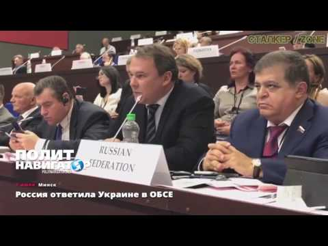 Russian Deputy Pyotr Tolstoy Responds to Ukraine at the OSCE Parliamentary Assembly