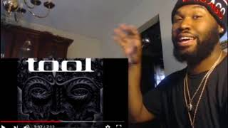 Download Tool - Vicarious - REACTION Mp3 and Videos