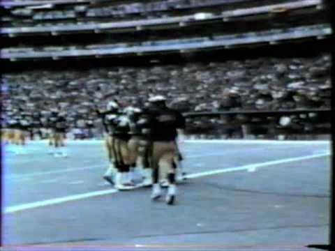 Pittsurgh Steelers (1980)
