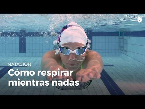 Cómo respirar correctamente mientras nadas | Miedo al agua