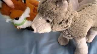 Webkinz Wolf Pack: Episode 12