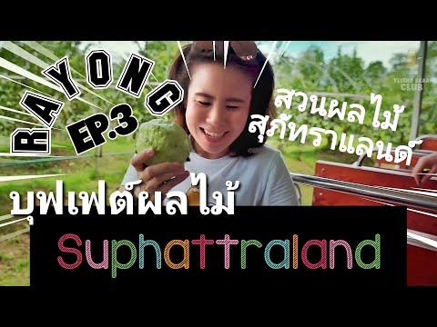 RAYONG Ep.3 เที่ยวสวนสุภัทราแลนด์ บุฟเฟต์ผลไม้ บุฟเฟต์ทุเรียน   Fruit buffet & tour at Suphattraland