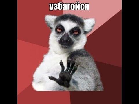 """Ситуація між """"Газпромом"""" і """"Нафтогазом"""" викликає побоювання не лише щодо поставок газу в Україну, а й стосовно транзиту газу в ЄС, - Єврокомісія - Цензор.НЕТ 1070"""
