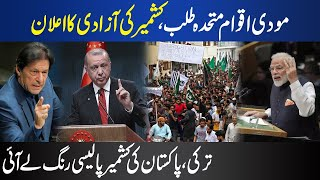 Turkey Pakistan Make New Policy On Kashmir and Article 370 Imran Khan Tayyip Erdogan Modi