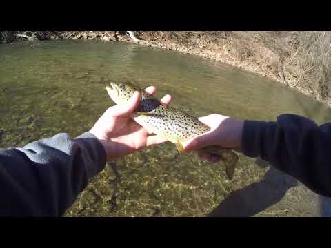 Winter Trout Fishing In Highly Pressured Creek!! (Pickering Creek,PA)