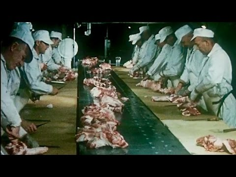 """""""This is Hormel"""" 1965 Meat Processing Plant Tour - Preview"""