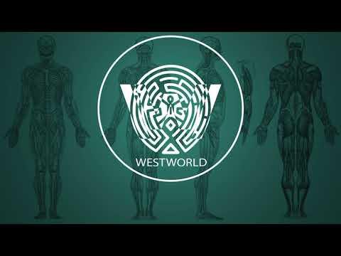 Ramin Djawadi - Runaway (Westworld Season...