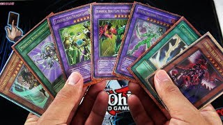 Purchasing a $50,000 YuGiOh Collection from Kaiba | ULTIMATE Rare Binders!!