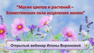 Магия цветов и растений. Сеанс с Энергией Эфирные Цветы.