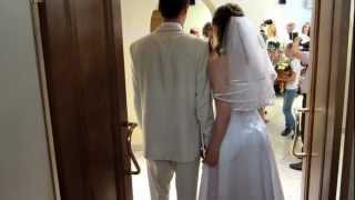 свадьба Кости и Настя, поздравления в ЗАГСе