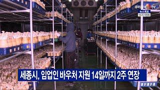 [B tv 세종뉴스]세종시, 임업인 바우처 지원 14일…