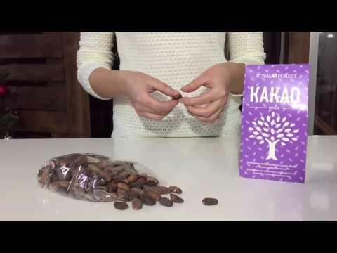 Какао бобы - польза и вред, калорийность какао бобов