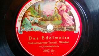 Nachtschwärmer Terzett München - Das Edelweiss - Lied mit Zitherbegleitung