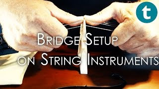 Bridge setup for strings - in 30 seconds or less