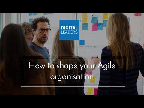 Webinar: How to shape your Agile organisation