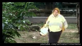 Cikanka sere v ZOO (pocta originalnimu videu)