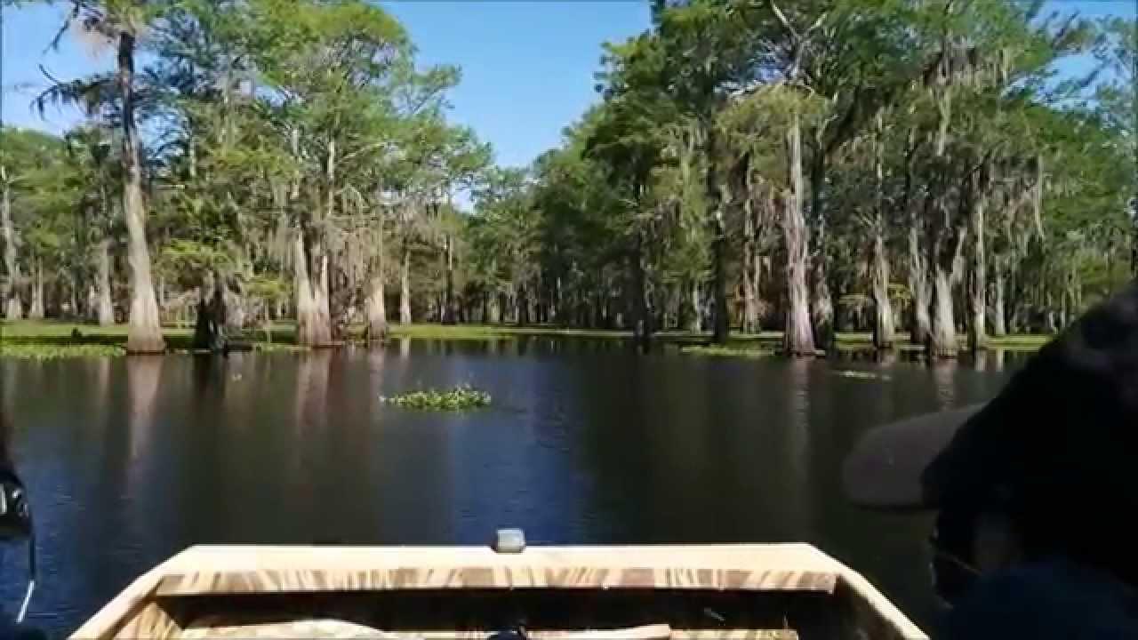 Atchafalaya Swamp Tours