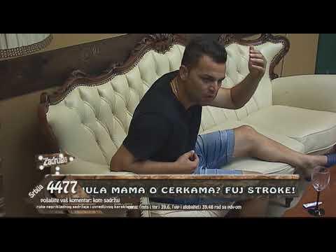 Zadruga 2 - Nako što je napustio Zadrugu, Cobe gostuje u studiju - 12.11.2018.