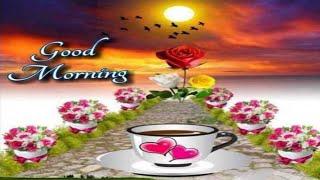 🌺 GOOD MORNING 🌺 video - WhatsApp Wishes