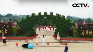 [精彩活动迎国庆] 广西柳州 红旗招展迎国庆 绿植鲜花来点缀 | CCTV