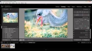 المحاضره الخامسة :: Adobe Lightroom 5