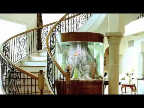 Aquarium environments custom fish tanks youtube for Custom fish tanks