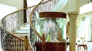 Aquarium Environments - Custom Fish Tanks