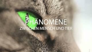 Buch: Phänomene zwischen Mensch und Tier